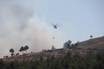 AMANOS DAĞLARI - Hatay'da Orman Yangını
