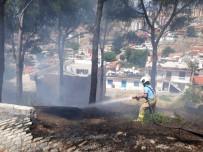ULU CAMİİ - Yangına Anında Müdahale Edildi