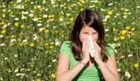 FARENJIT - uzmanlar yaz gribi konusunda uyarıyor