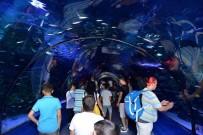 TİMSAH - Antalya 'Yetimlerine Sahip Çıkıyor' Projesi