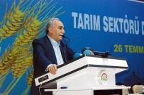 BAKAN YARDIMCISI - Bakan Fakıbaba Tarım Sektörü Değerlendirme Toplantısı'na Katıldı