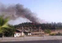 FABRIKA - Denizli'de Orman Yangınına 1 Gözaltı