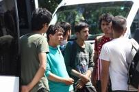 DOĞUBEYAZıT - İstanbul Ve Ankara Umuduyla Sivas'a Bırakıldılar