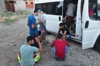 ZEYTINLIK - Çanakkale'de 35 Kaçak Yakalandı
