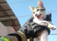 BÜYÜKDERE - Elektrik Direğinden Kedi Kurtarma Operasyonu