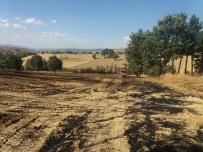 AYDOĞMUŞ - Hisarcık'ta Arazi Yangını