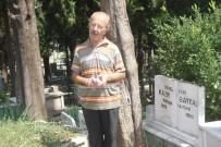 FELSEFE - Kazım Baykal Mezarı Başında Anıldı