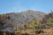 ORMAN İŞÇİSİ - Marmaris'teki Orman Yangını Söndürüldü