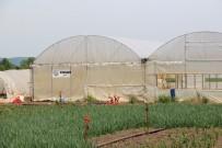 KREDİ DESTEĞİ - OGM'den Sakarya'ya 42 Milyon Kredi Desteği