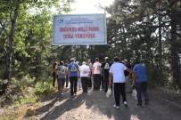 MEHMET YıLDıZ - Soğuksu Milli Parkı'nda Doğa Yürüyüşü