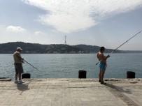 OKMEYDANı - (Tekrar) Sahilde Yürüyüş Hayatını Kararttı