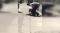 Başkent'te Pitbull Dehşeti