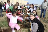 HALİL İBRAHİM ŞENOL - Gaziemir'de Yeşil Alan Ve Modern Parklar Artıyor