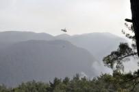 AMANOS DAĞLARI - FLAŞ! Hatay'da orman yangını