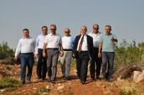 AHMET ERDOĞDU - Manisa'ya Yüksek Güvenlikli Akıl Hastanesi Yapılacak