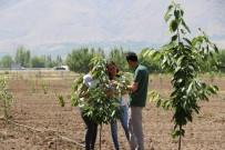 MURAT ŞAHIN - 'Mutfaktan Bahçeye' Projesinin Uygulanması Devam Ediliyor