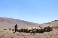 ALI KABAN - Su Sıkıntısına Tedbirler Alınıyor