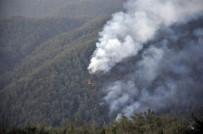AMANOS DAĞLARI - Amanos Dağları'ndaki yangın sürüyor!