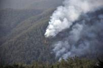 AMANOS DAĞLARI - Hatay'da orman yangını sürüyor!