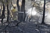 MISVAK - 30 Hektarı Kül Eden Çanakkale'deki Orman Yangını Kontrol Altında