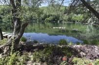 AYDINLATMA DİREĞİ - Büyükşehir, Karagöl Milli Parkı'nı Yeniliyor