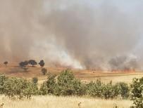 Dargeçit'te Arazi Yangını