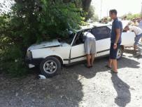 ALI KESKIN - Otomobil Ağaca Çarptı Açıklaması 1 Yaralı
