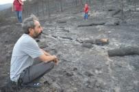 MAZLUM NURLU - Özgür Özel Yangında Tahliye Edilen Köyleri Ziyaret Etti