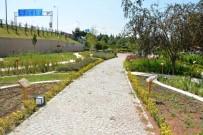 KİMLİK KARTI - Tıbbi Aromatik Bitkiler Bahçesi Ziyaretçilerini Bekliyor