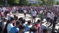 SÜTLÜCE - Trabzonspor'da 50. Yıl Etkinlikleri Başladı
