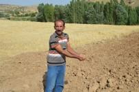 DERECIK - Bu Köyün Toprağı Akrep Kaçırıyor