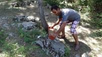Engelliler Doğaya Yem Ve Su Bıraktı