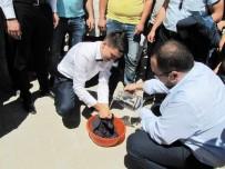 OĞLAN - Hisarcık'ta Damada Çamaşır Yıkama Eziyeti