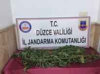 KIRAZLı - Jandarmadan Uyuşturucu Operasyonu