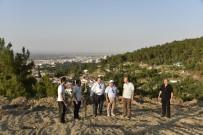 HAYVANAT BAHÇESİ - Mesir Tabiat Parkı Manisa'nın Yeni Cazibe Merkezi Olacak