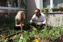 ORGANİK SEBZE - Dikiş Nakış Değil, Şehrin Göbeğinde Bağ Bahçe Yapıyorlar