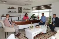 TURGAY ŞIRIN - Başkan Şirin'den MASKİ'ye Atık Su Ziyareti