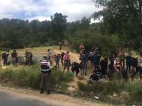 İNSAN KAÇAKÇILARI - Kazdağları'nda 36 kaçak yakalandı