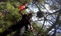 PARAŞÜTÇÜ - Paraşütçü Ağaçlara Daldı