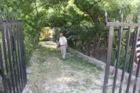 KAPALI ALAN - Bölgenin İlk Ve Tek 'Hobi Bahçesi' Şaphane'de