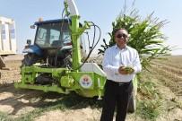 DÖNER SERMAYE - Büyükşehir'den Çiftçiye Silaj Biçme Desteği
