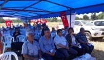 HASAN ŞAHIN - Çan Karakoca Köyünde Arpa Tarla Günü Yapıldı