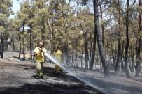 MISVAK - Ezine'deki Yangın Tamamen Kontrol Altında