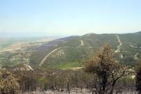 DOĞAL AFET - Korucu Açıklaması 'Denizli'deki Orman Yangının Sebebi Kaza Ve Doğal Afet Değil'