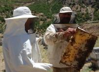 ORGANİK BAL - Dünya Birincisi Bitlis Balı Organik Üretilecek