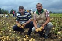 HÜSEYIN AVCı - Patates Üreticisinin Yüzü Gülüyor
