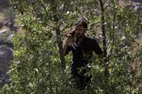 BAZ İSTASYONU - Şebeke Bulmak İçin Ağaçlara Tırmanıp, Dağa Çıkıyorlar