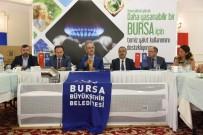 HAVA KIRLILIĞI - Türkiye'de Örnek Proje Açıklaması Dar Gelirliye Kömür Yerine Doğalgaz Yardımı Başlıyor