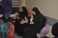 GÖÇMEN KAÇAKÇILIĞI - Hatay'da 12 Kaçak Göçmen Yakalandı