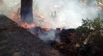 HALITPAŞA - Manisa'da Sağlık Ocağı Yakınında Yangın